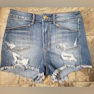 Articles Of Society Distressed Denim Shorts 27
